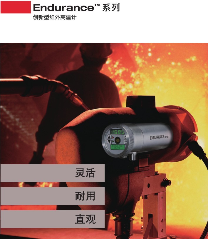 新款雷泰在线E1RL,E1RH测温仪2.jpg